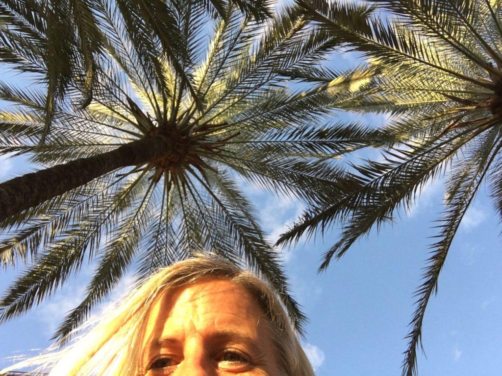 Miss Move in Palma de Mallorca
