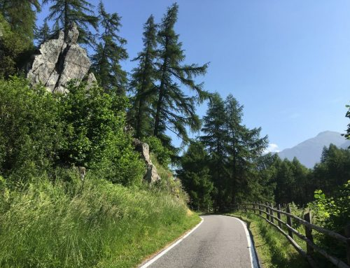 Einsteiger-Tour Etsch-Radweg: vom Reschenpass nach Verona