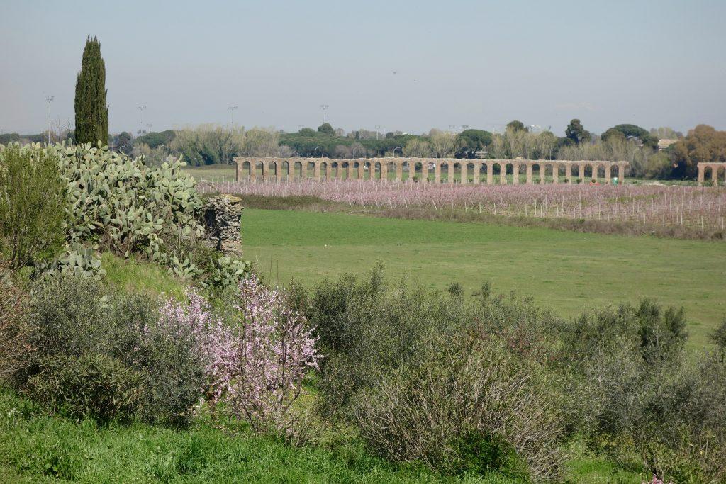 Via Appia Antica per Fahrrad