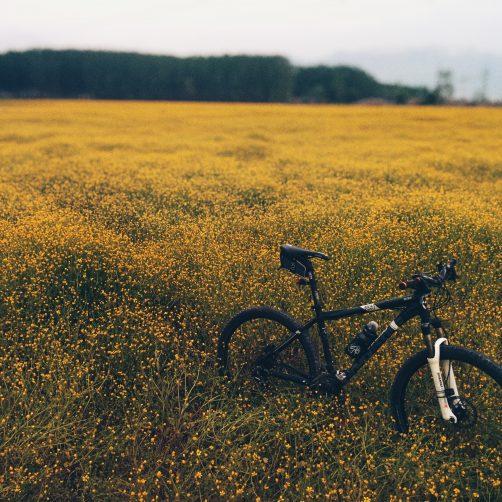 Fahrradnavigation für Anfänger