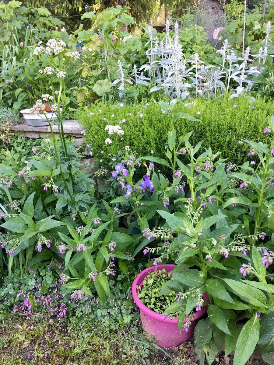 Garten im Piemont