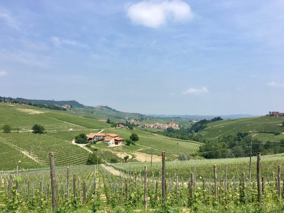 Langhe, Piemont per Fahrrad