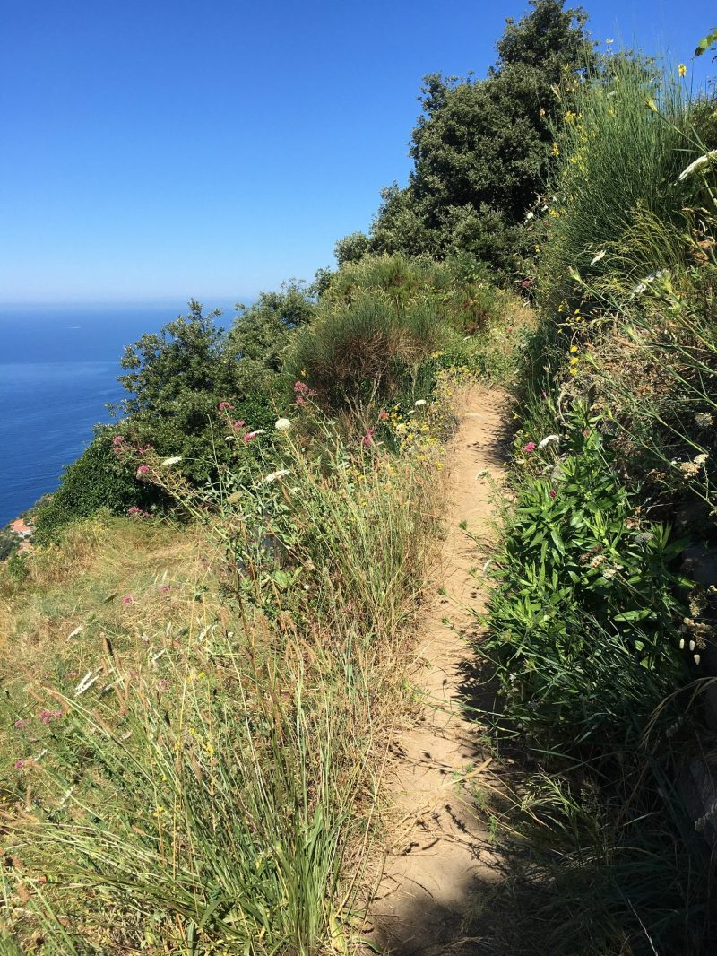 Wanderung mit Meerblick