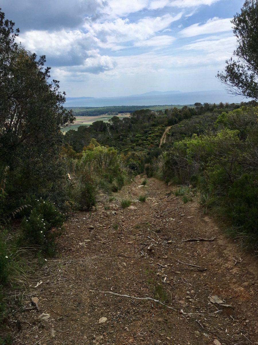 Nicht ganz einfache Trails für Mountainbiker in der Toskana
